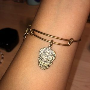 Alex and Ani Calavera Bracelet